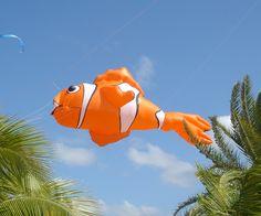 Clown Fish kite line laundry designed by Bernhard Dingwert for Premier Kites. #kite #fish #windsock