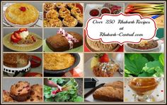 Rhubarb Website - Hundreds of Free Rhubarb Recipes with Pictures! How to Grow Rhubarb info too! Easy Rhubarb Recipes, Rhubarb Desserts, Rhubarb Dishes, Easy Recipes, Freeze Rhubarb, Rhubarb Rhubarb, Rhubarb Compote, Baking Recipes, Snack Recipes