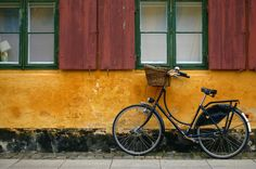 bicycle and window