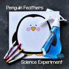 In this Penguin Feathers Science Experiment, children will learn how a wax on a penguin's feathers help keep it dry.