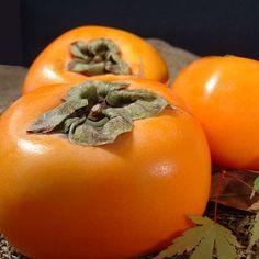 送料無料・和歌山の「柿」。西浦さんちのたねなし柿
