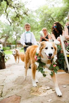 This puppy ring bearer is the cutest addition to any wedding party! | Tank Goodness Photography