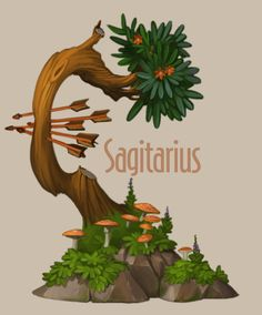 Amazing trees. Zodiac on Behance... love how there's mushrooms #SAG