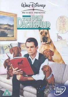 The Ugly Dachshund - very stupid film I caught once on tv, but the doxies are verrry entertaining!