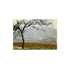 Giverny Countryside Giclee Print Wall Art ($33) ❤ liked on Polyvore featuring home, home decor, wall art, claude monet paintings, giclee painting and giclee wall art
