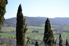 You May Be Wandering: Posting from The Farm Files ~ Off the Beaten Path in Tuscany