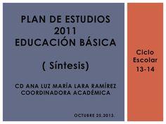 Plan de estudios 2011, síntesis