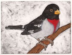 """Beauty of Songbirds! by Diane on Etsy  Our """"Scarlet Tanager"""" was featured in a recent Etsy Treasure!"""