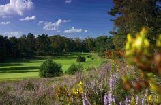 Golfplätze in Deutschland   Die schönsten #Golfplätze in #Deutschland, was meint Ihr!?