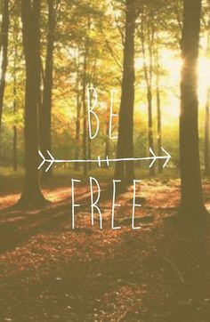Freedom only exists in the Present Moment - in the Eternal Presence that is within you, that is You