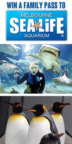 Win a Family Pass to the Melbourne Aquarium  #Win #Competition #Family #Pass #Melbourne #Aquarium #Sea #Creatures #Feeds #Talks #Fun #Activities