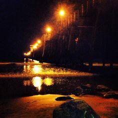 Frolicking under Oceanside pier. #HolidayInnExpressOceanside
