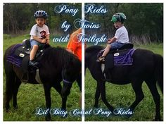 Pony Rides for Twin Brothers with Twilight