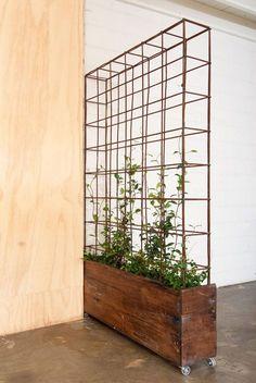 The 11 Best Small Studio Apartment Room Dividers - Cesa Home Decor Ideas Vertical Garden Design, Vertical Gardens, Back Gardens, Indoor Planters, Indoor Garden, Home And Garden, Low Maintenance Garden, Cool Landscapes, Diy Patio