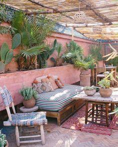 Mur rose pour plantes vertes