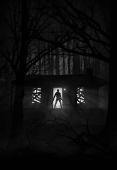 Marko Manev is back with more great noir-style movie art Evil Dead 1981, Ash Evil Dead, Scary Movies, Horror Movies, Posters Geek, Movie Posters, Horror Posters, Evil Dead Series, Creepy