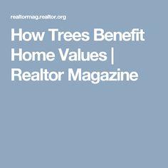 How Trees Benefit Home Values | Realtor Magazine