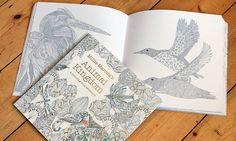 Animal Kingdom Cannot wait to buy copy!