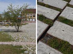 AtelierDreiseitl_ZollhallenPlaza_ Let urban planning blend in with vegetation Landscape And Urbanism, Landscape Design, Paving Pattern, Sponge City, Garden Floor, Garden Architecture, Parking Design, Outdoor Flooring, Urban Planning