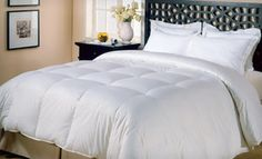 Groupon - $35 for an All Seasons Down Alternative Comforter ($79.99 List Price). Three Sizes Available. Free Shipping and Returns. in Online Deal. Groupon deal price: $35.0.00