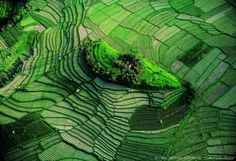 Photo by Yann Arthus Bertrand - Island in the rice fields of Bali Arthus Bertrand, Photocollage, Sky View, Jolie Photo, Birds Eye View, What A Wonderful World, Color Of Life, Land Art, Aerial Photography