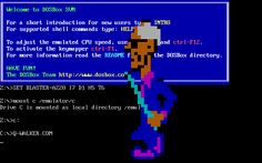 The Malware Museum, An Online Collection of Computer Viruses and Other Malware