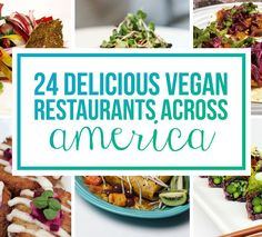 24 Vegan Restaurants That Belong On Your Culinary Bucket List