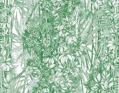 Behang Pierre Frey Amazone- Jungle Collection  Het behang Pierre Frey…