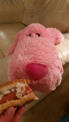 Mmm mummy got me a hot dog, love Sniffy ♡
