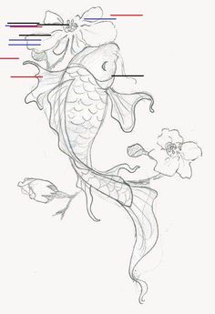 Japanese Dragon Koi Fish Tattoo Designs, Drawings and Outlines. The inspirational best red and blue koi tattoos for on your sleeve, arm or thigh. drawing 110 Best Japanese Koi Fish Tattoo Designs and Drawings - Piercings Models Japanese Koi Fish Tattoo, Koi Fish Drawing, Fish Drawings, Japanese Sleeve Tattoos, Pencil Drawings, Japanese Drawings, Drawings Of Flowers, Pencil Art, Art Drawings Easy