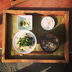 SYOKU-YABO農園 (農園+レストラン) URL:http://syoku-yabo.com、住所:横須賀市芦名2-1700 大楠山登山口入り口 食と本気で向き合う畑のレストラン。三浦の山を楽しみながら、目の前の畑で採れたお野菜をいただける特別な食体験。日本中から取り寄せたお味噌を選べるお味噌汁も大満足。晴れた日にオススメです。