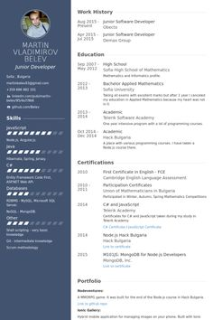Resume For Software Engineer Software Engineer Resume Templates     junior software developer Resume Example