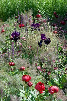 Laurent-Perrier Garden, designed by Luciano Giubbilei, RHS Chelsea Flower Show…