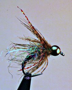Sparkler Caddis Pupa SB. For more fly fishing and fly reels please follow and check out www.theflyreelguide.com Also check out the original pinners Fishwest site and support. Thanks #flyfishing