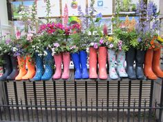 מיכלים בגן - איתי שלם Hunter Boots, Rubber Rain Boots, Shoes, Zapatos, Shoes Outlet, Shoe, Footwear