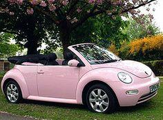 Pink Love Bug
