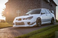 "741 Me gusta, 11 comentarios - Chris (@renesiskiller) en Instagram: ""More golden things  #subie001 #subaru #impreza #wrx #sti #photography #dslr #canon #arev #raysmsc…"""