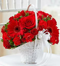 All Red Flower Girl Basket  Red roses, exquisite Gerbera daisies, red mini carnations and red spray roses create this fun, fresh Flower Girl arrangement. It's beautifully hand-crafted in a classic white handled basket to coordinate perfectly with your wedding ensemble. $25.00