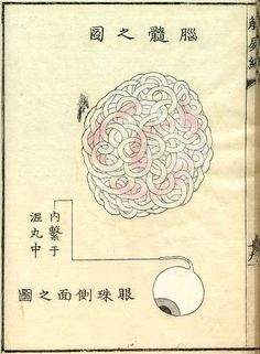 Kaishihen (Dissection Notes), 177 2
