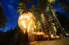 Yellow Treehouse Restaurant - Auckland, New Zealand..  Oh this is a must!!!  Love Love Love