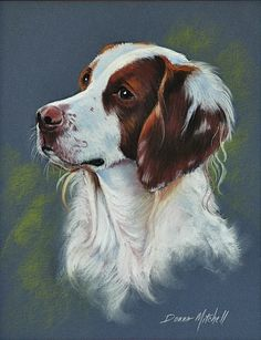 "Pastel Painting of the dog next door. ""Brittany, a Brittany Spaniel"", was a beautiful dog, always watching for the birds!"