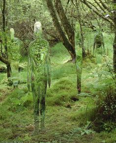 Forest ghosts by Rob Mulholland  Contemporary artist Rob Mulholland designed the series of six mirrored statues to make people think about man's impact on the surrounding landscape over the centuries.