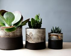 Medium and large size planter perfect for larger cacti and succulents.  Handbuilt using unusual black clay, decorated with white slip and coloured