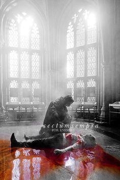 Severus et Drago