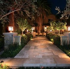 An intricate stone walkway light up beautiful with simple outdoor lights! Outdoor Steps, Outdoor Fire, Palm Trees Landscaping, Garden Landscaping, Contemporary Landscape, Landscape Design, Urban Landscape, Garden Design, Outdoor Topiary