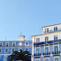 Sunny Sunday in Lisbon #inspiration #sunday #blue #bluesky #houses #prints #palmtree #botanical #green #tree #nature #lisbon #lisboa  #europe #warm #winter #january #2017 #white #ethical #mindful #trend #vegan  #collection #comingsoon