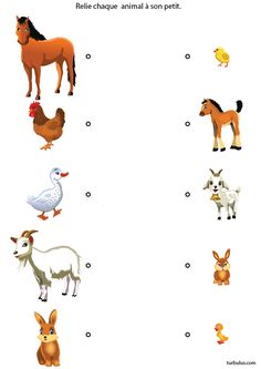 Observation game for children from 3 to 4 years old; connect animals to their pe . Color Worksheets For Preschool, Preschool Activity Books, Animal Activities For Kids, Animal Worksheets, Preschool Writing, Preschool Learning Activities, Kids Learning, Community Helpers Preschool, Kids Education