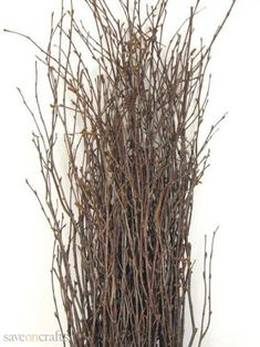 Great for adding to floral arrangements, these birch branches give a subtle rustic touch to your decor. The natural birch branches come in a bundle of They range in size from tall. Wedding Flower Arrangements, Floral Arrangements, Wedding Flowers, Fall Flowers, Fresh Flowers, Wedding Centerpieces, Birch Branches, Willow Branches, Manzanita Tree