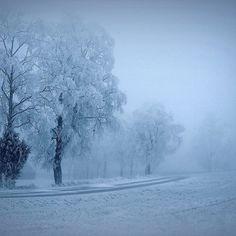 Lexus Suv, Days In December, Visit Norway, Your Name, Memento Mori, Oslo, Winter Season, Winter Wonderland, Countryside