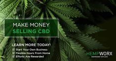 MLM and CBD is a winning combination! Link And Learn, Online Business Opportunities, Research Companies, Used Cell Phones, Sales Strategy, Lets Do It, Starting Your Own Business, Be Your Own Boss, Business Motivation